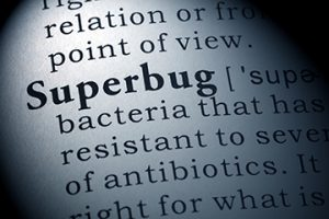 Definition of Superbug