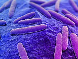 Macro of a virus Strand